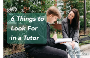 Image for 6 Things to Look For in a Tutor - From the Emergent Education Blog